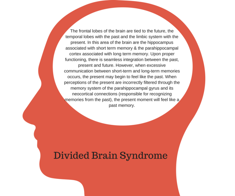 divided-brain-syndrome-the-frontal-lobes-of-the-brain-are-tied-to-the-future-the-temporal-lobes-with-the-past-and-the-limbic-system-with-the-present-in-this-area-of-the-brain-are-the-hippocampus-as